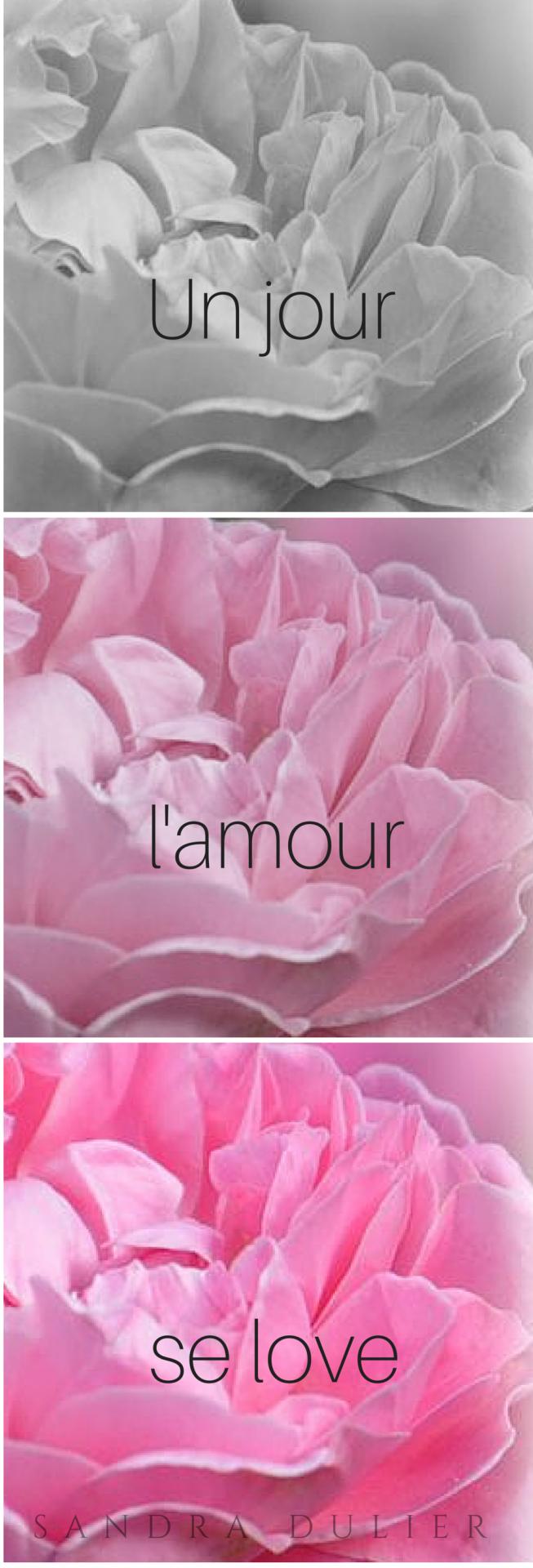 Une Définition De Lamour En Poésie