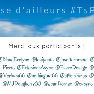 Merci aux twitteurs #tspoetes2 pour leur participation. Plus d'infos sur http://www.sandradulier.com/blog/tspoetes2.html